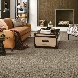 Living room Carpet flooring | Design Waterville