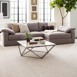 Modern living room   Design Waterville