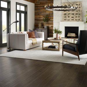 Living room interior   Design Waterville