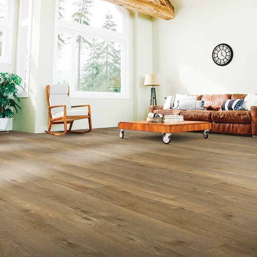 Living room Laminate flooring | Design Waterville